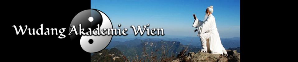 wudang-wien-tai-chi-1