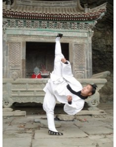 wudang-sanfeng-academy-photo-328x418