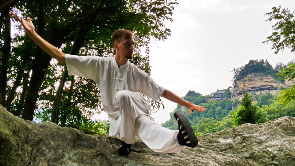 Michael Weichhardt Master Ziji -11